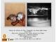 Exposición Pictórica y Fotográfica